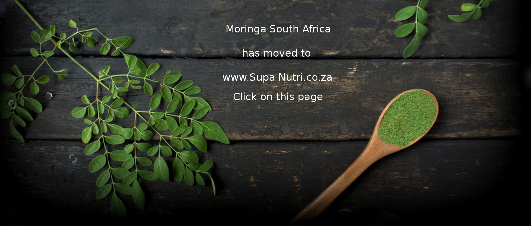 Moringa South Africa Supa Nutri